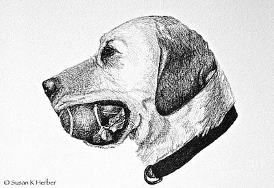 Tennis Ball Drawing - Ball Collector by Susan Herber