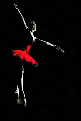 Photograph - Ballerina by CarolLMiller Photography