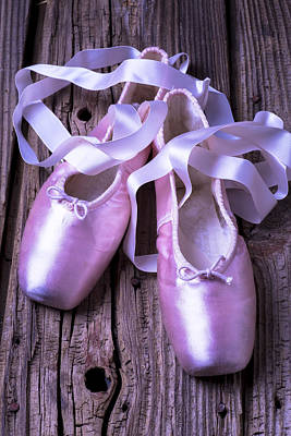 Knothole Photograph - Ballet Slippers by Garry Gay