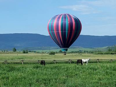 Photograph - Balloon And Horses by Stephen Schaps