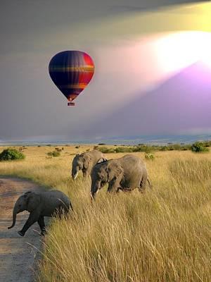 Photograph - Baloon Safari by David Rich