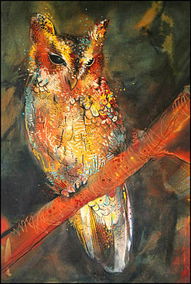 Screech Owl Drawing - Balsas Screech Owl by Sharlena Wood