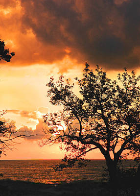 Photograph - Baltic Sunset In The South Of Sweden by Mary Lee Dereske