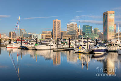 Photograph - Baltimore Inner Harbor Skyline II by Clarence Holmes