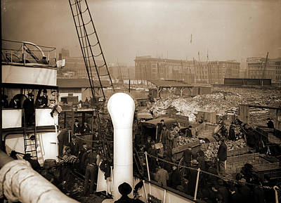 Baltimore Drawing - Baltimore, Maryland, Unloading Banana Steamer, Harbors by Litz Collection