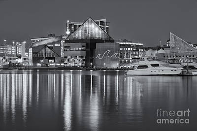 Photograph - Baltimore National Aquarium At Twilight II by Clarence Holmes