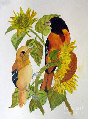 Animals Paintings - Baltimore Oriole by Donna Walsh