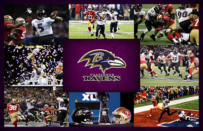 Baltimore Ravens Wall Art - Photograph - Baltimore Ravens 2 by Joe Hamilton