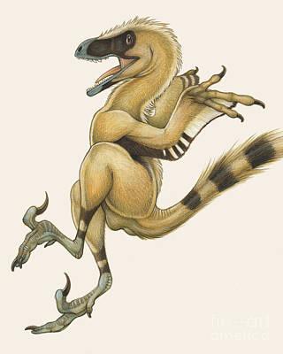 Dromaeosaurid Digital Art - Bambiraptor, A Bird-like Dromaeosaurid by H. Kyoht Luterman