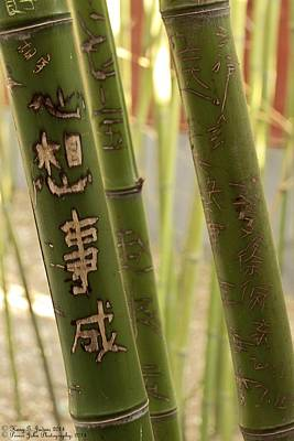 Photograph - Bamboo Carvings - 1  by Hany J