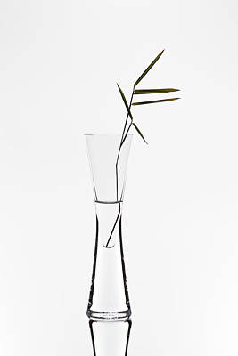 Vase Wall Art - Photograph - Bamboo by Christian Pabst