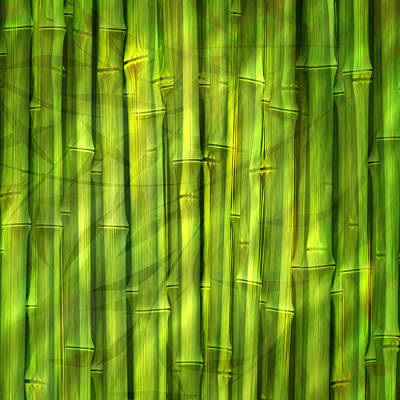 Meditative Mixed Media - Bamboo Dream by Lutz Baar