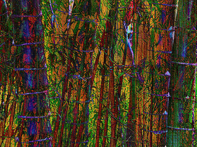 Mixed Media - Bamboo Forest by Kiki Art