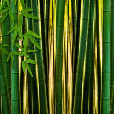 Bamboo Digital Art - Bamboo Forest- Bamboo Artwork by Lourry Legarde