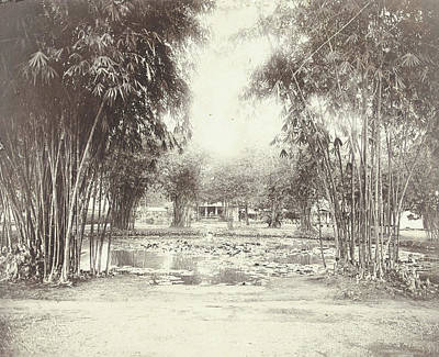 Bamboo Garden And Pond With A House, Anonymous Art Print