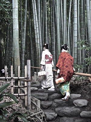 Photograph - Bamboo Grove And Kimono by Larry Knipfing