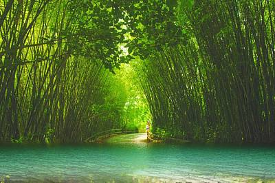 bamboo path to  Blue Lagoon  Art Print by Dennis Baswell