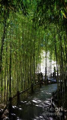 Photograph - Bamboo Pathway by Peggy Hughes
