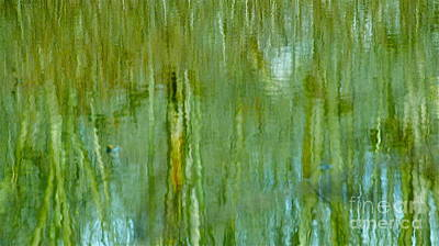 Photograph - Bamboo Reflections by Cindy Lee Longhini