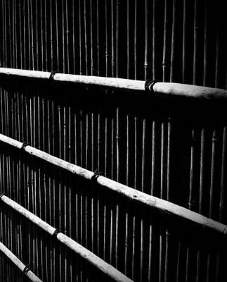 Bamboo Screen Art Print