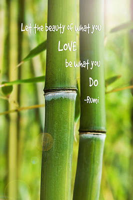 Photograph - Rumi Quote Bamboo I by Marianne Campolongo