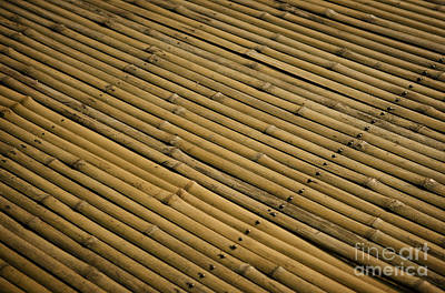 Photograph - Bamboo Surface Detail by Jacek Malipan