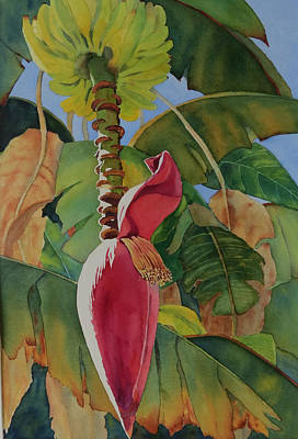 Painting - Banana Beginnings by Judy Mercer