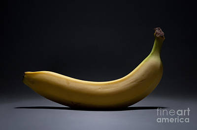 Bananas Photograph - Banana In Limbo by Dan Holm