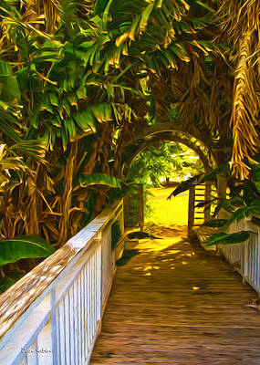 Photograph - Banana Pathway by Dan Sabin