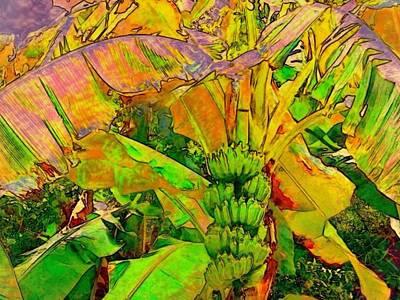 Digital Art - Banana Tree With Bunch - Horizontal by Lyn Voytershark