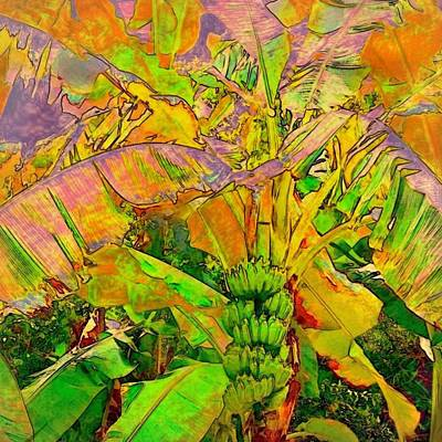 Painting - Banana Tree With Bunch - Square by Lyn Voytershark