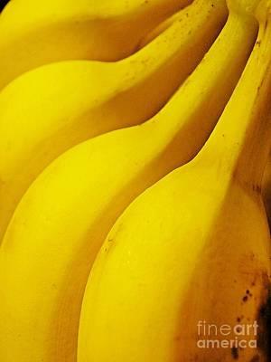 Banana Photograph - Bananas by Sarah Loft