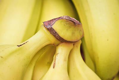 Bananas Art Print by Tom Gowanlock