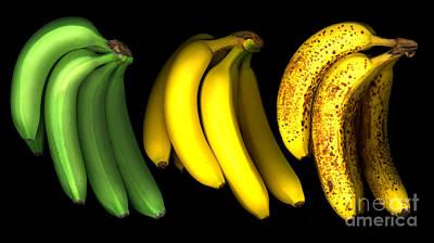 Aging Photograph - Bananas by Tony Cordoza