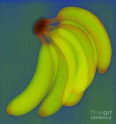 Photograph - Bananas X-ray by Scott Camazine