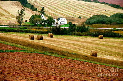 Photograph - Banded Fields by Frank Townsley