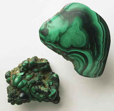 Malachite Photograph - Banded Malachite by Dorling Kindersley/uig