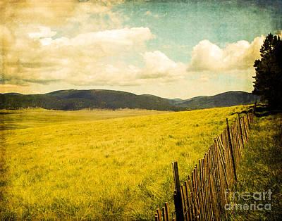 Jemez Mountains Photograph - Bandelier Wilderness by Sonja Quintero
