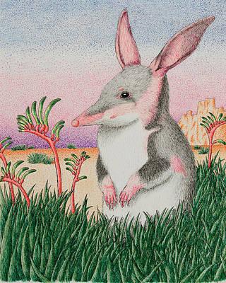Marsupial Mixed Media - Bandicoot In Desert by Jeanette K