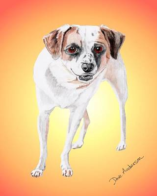 Animal Shelter Drawing - Bandito - A Former Shelter Sweetie by Dave Anderson