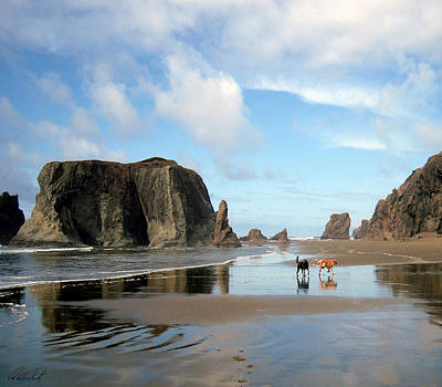 Photograph - Bandon Beach Oregon Doodle Heaven by Michele Avanti