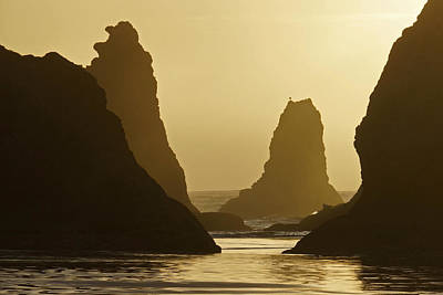 Photograph - Bandon Beach Sunset by Inge Riis McDonald