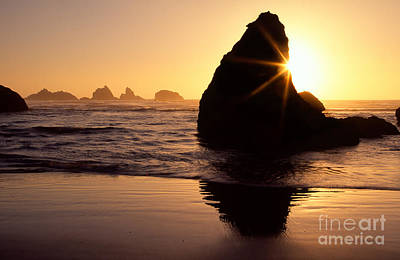 Photograph - Bandon Golden Moment by Inge Johnsson