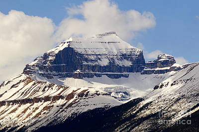 Photograph - Banff - Mount Saskatchewan by Terry Elniski
