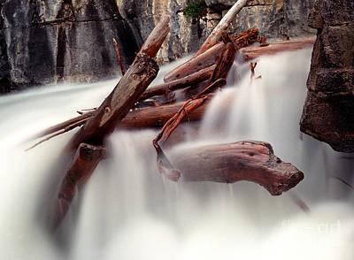Photograph - Banff - Panther Falls Logs by Terry Elniski