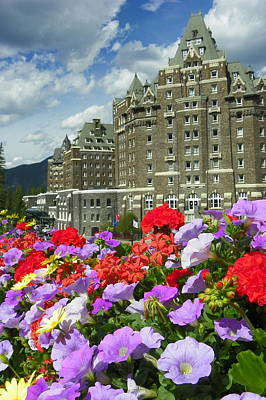 Photograph - Banff Springs Flowers by Georgia Hamlin