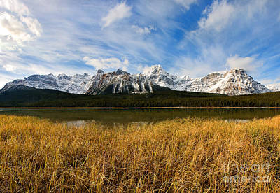 Photograph - Banff - Waterfowl Lakes In Autumn by Terry Elniski