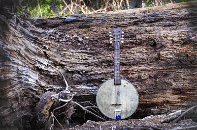 Tree Roots Digital Art - Banjo Mandolin In The Woods by Bill Cannon