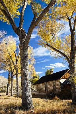 Photograph - Bannack Cabin by Sonya Lang