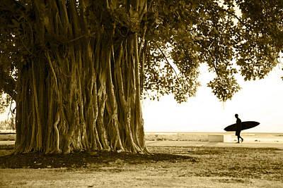 Vines Photograph - Banyan Surfer by Sean Davey